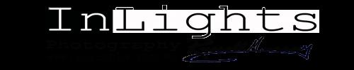 inlights logo RUSS2013